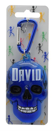 SCULL KEYRING DAVID (3)