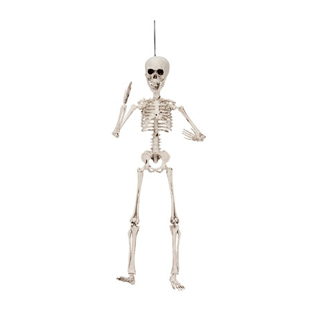 POSABLE SKELETON 50CM